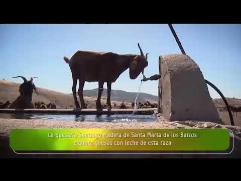 Entrevista a María Jesús Rodríguez y Casildo Díaz, en «La Besana» de Canal Extremadura